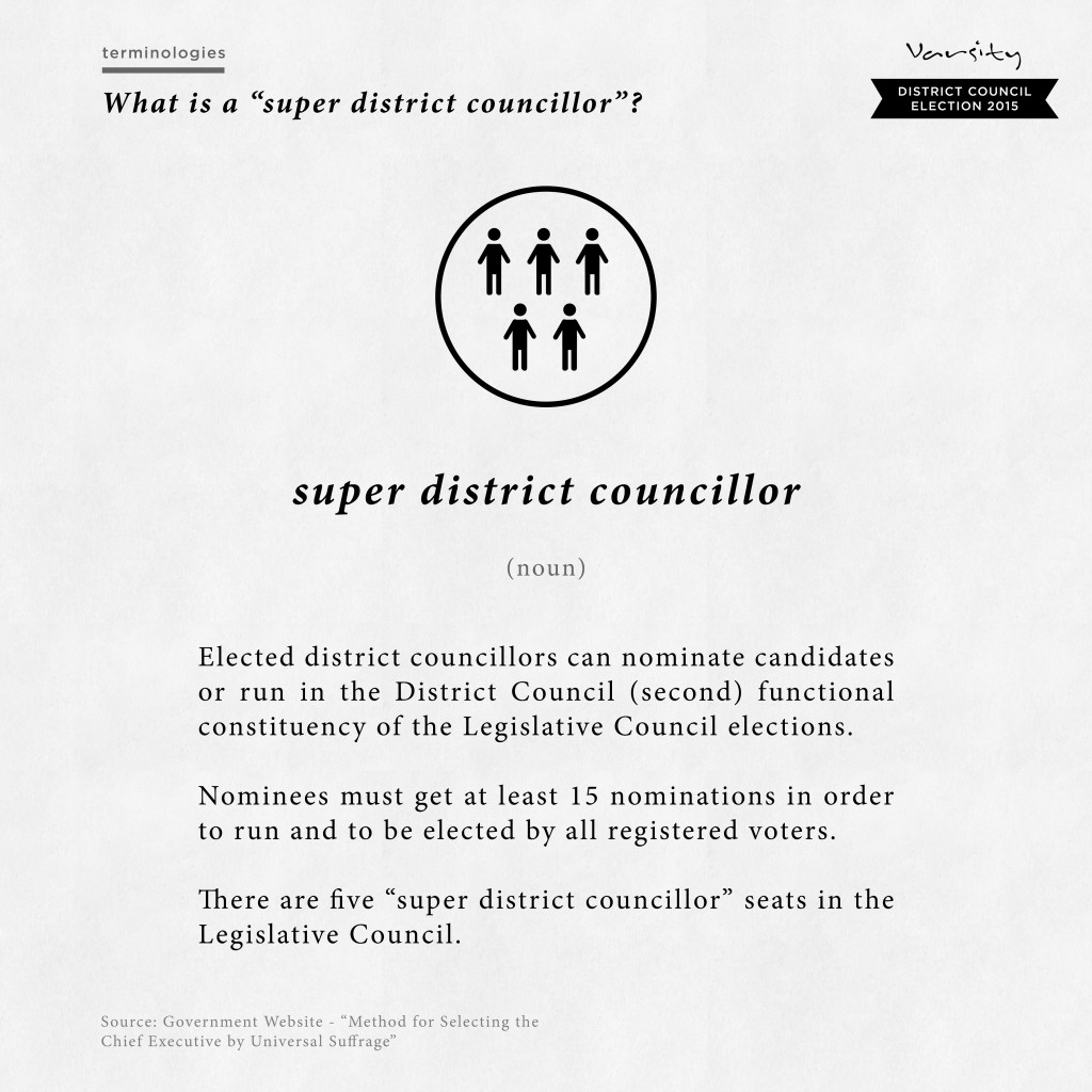 Super District Councillor